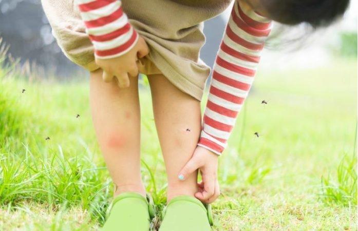 Важни совети: Како да ги заштитите вашите деца од комарците?