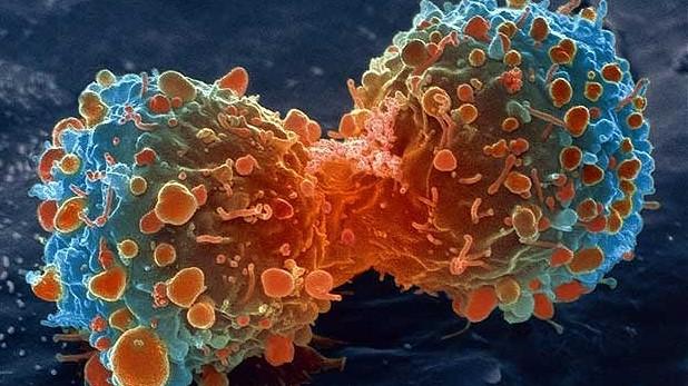 Од денеска почна дисперзија на онколошката терапија за пациентите со малигни болести
