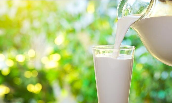 Козјото млеко ви носи здравје