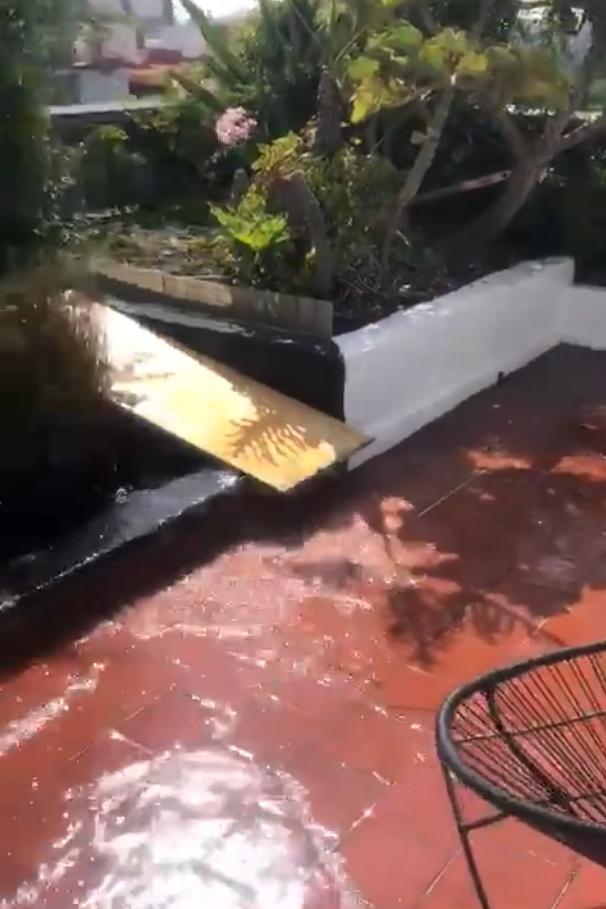 ЗЕМЈАТА РАСПУКА НА ДВА ДЕЛА: Мексико пред неколку минути го погоди земјотрес од 7.7 степени- од овие снимки нема да заспиете!
