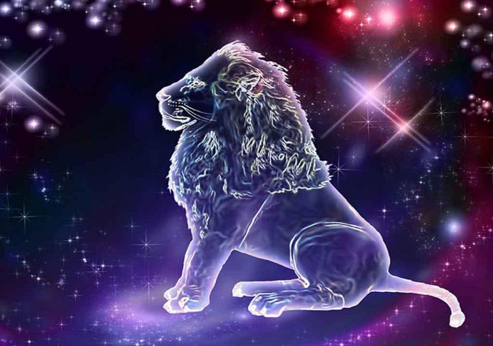Лавот не знае како да и пријде на симпатијата, Шкорпијата мисли дека се' може