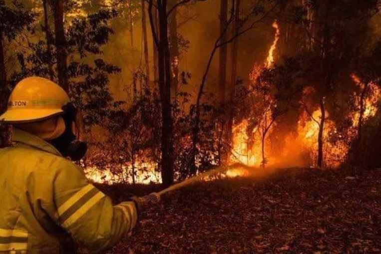 На Камчатка прогласена вонредна состојба поради големите шумски пожари