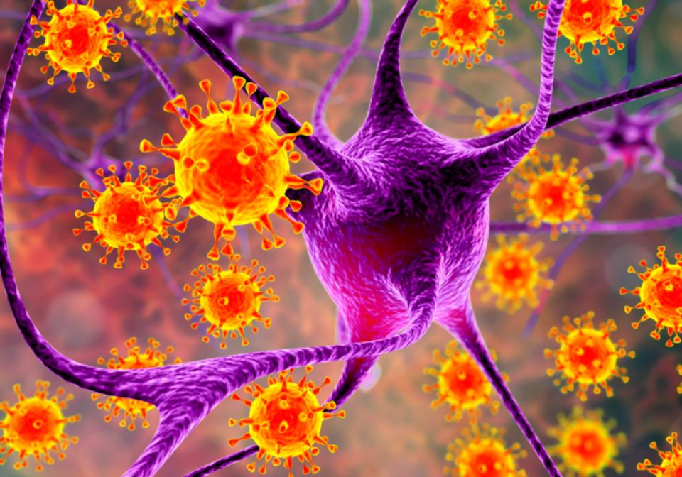 """Кина: Откриен нов вирус со """"потенцијал за пандемија"""""""