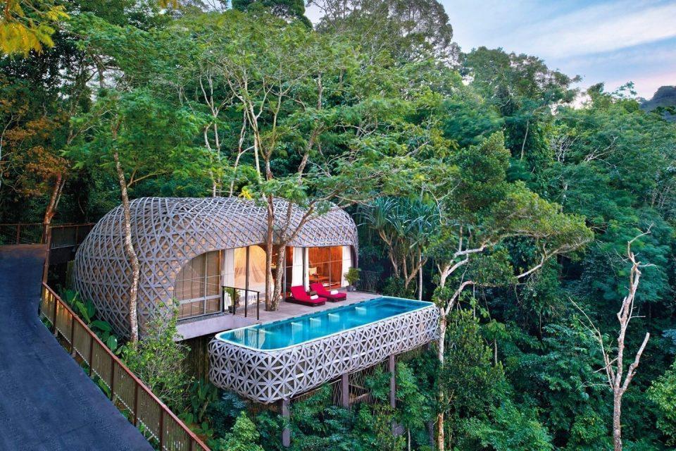 ФОТО: Најубавиот хотел на светот кој стои на гранки на дрвја