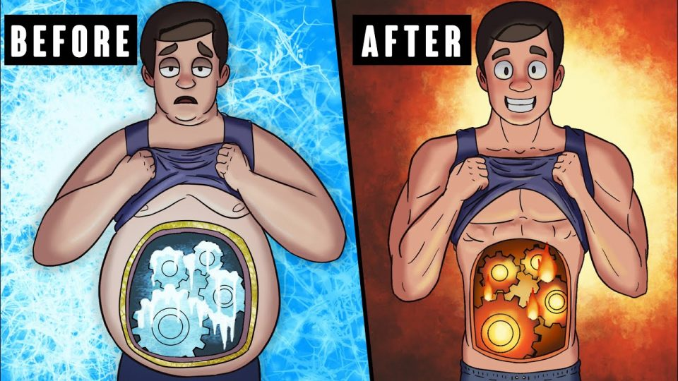 Што точно се случува во телото додека се топат маснотиите?