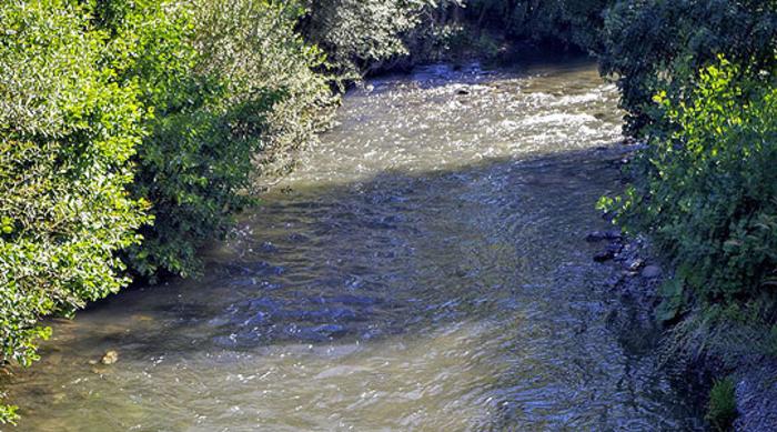 Нивото на поголем дел од реките под просекот