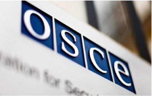 ОБСЕ испраќа само 30 набљудувачи на изборите во САД