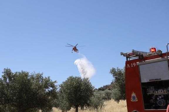 Голем пожар во близина на Атина, превентивна евакуација на населби и детски камп