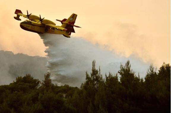 Во Грција за 24 часа регистрирани 57 шумски пожари