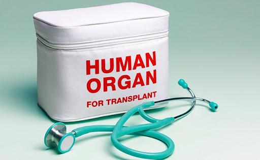 Направена нова кадаверична трансплантација, двајца пациенти добија бубрег од починат донор