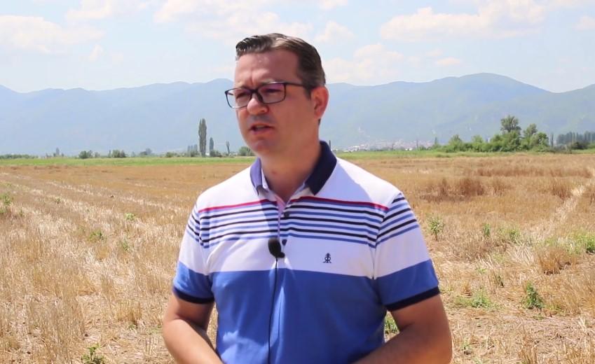 Трипуновски: Жетвата почна, а цената на пченицата се уште не е дефинирана!