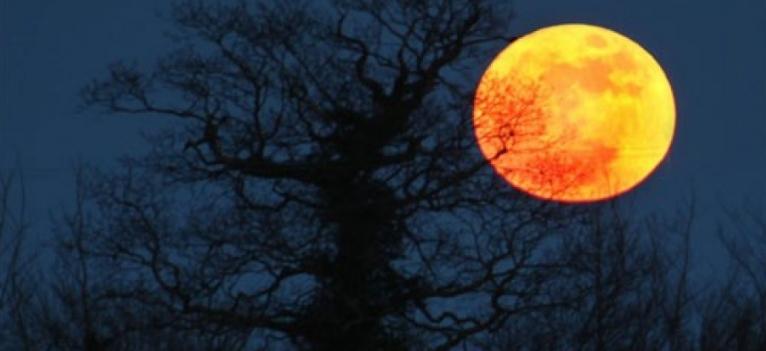 Месечината се оддалечува од нас