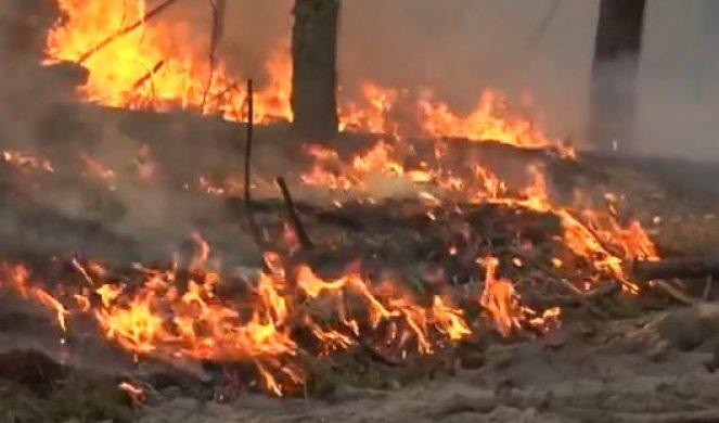 Уништени белите дробови на планетата: За 24 часа во Амазонија се забележани повеќе од 1.000 пожари (ВИДЕО)