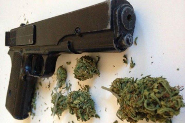 Запленета марихуана и пиштол