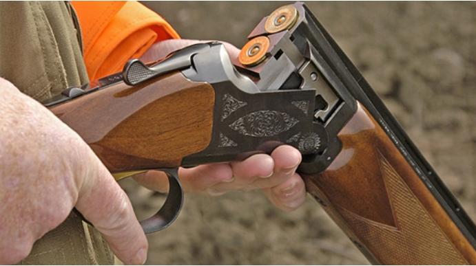 Ловокрадци кај велешко Рудник застрелале дива свиња во време на ловостој
