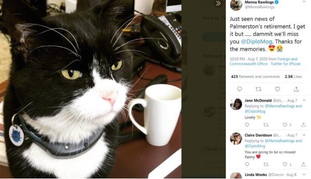 Најпознатиот мачор во Лондон заминува в пензија