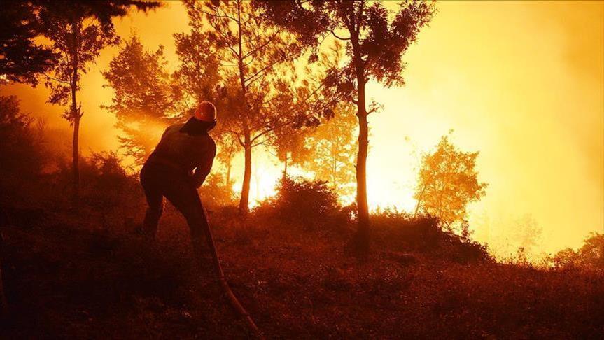 Пожар во Мадрид, евакуирани жителите