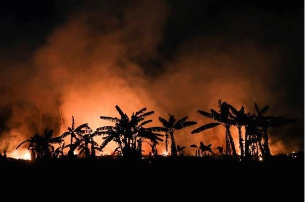 Зголемен ризик од пожари во Амазонската прашума