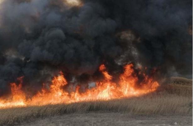 За три месеци 29 интервенции на гевгелиските пожарникари