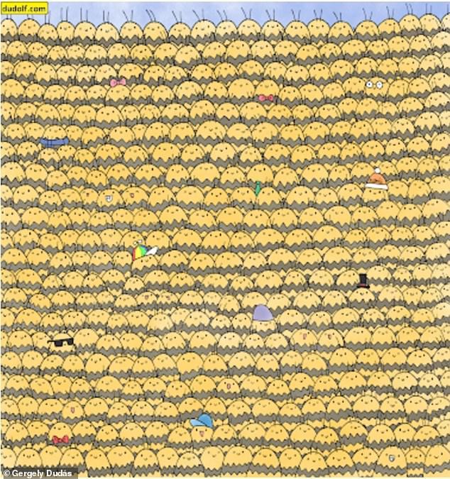 Загатка: Дали можете да ја пронајдете пчелата кралица помеѓу нејзината колонија?