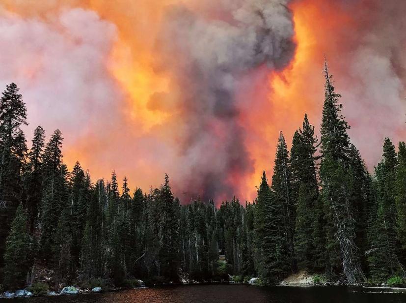 """Од пожар во Националната шума """"Сиера""""во Калифорнија спасени над 200 лица"""