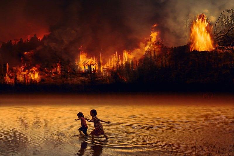 """Има ли крај? """"Белите дробови на планетата"""" повторно зафатени со пожари"""