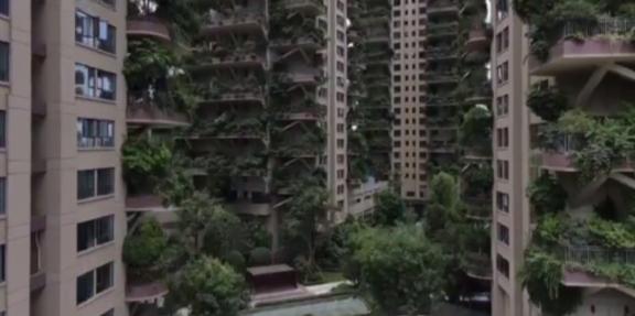 Еколошките згради во Кина привлекуваат комарци и ги бркаат станарите