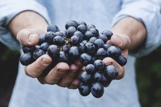 Дали грозјето носи вишок килограми?