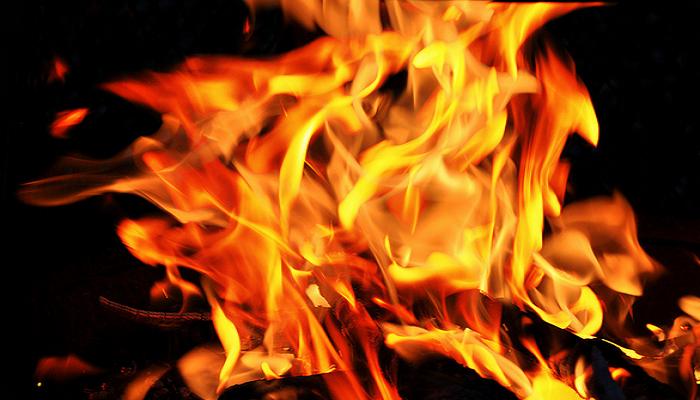 """Изгореа помошни простории во """"Оранжерии Хамзали"""" кај Струмица"""
