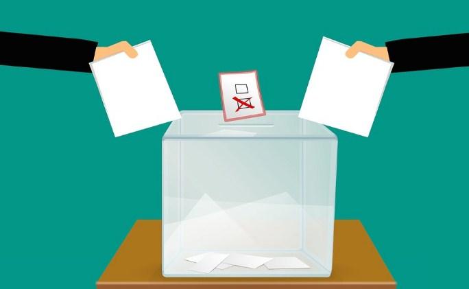Прв круг пaрламентарни избори во Литванија