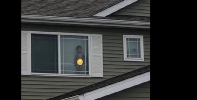 """""""Детето ви е голо на прозорец"""" – по оваа порака мајката истрчала во собата на синот"""