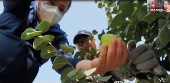 Земјоделството не може само против КОВИД, бара помош од државата