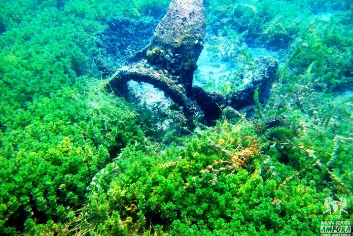Откриени и мапирани нови археолошки локалитети и поединечни наоди на источниот брег од Охридското Езеро
