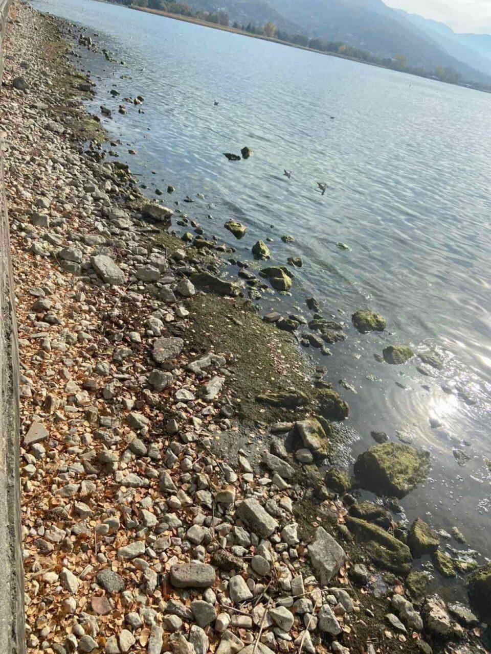 """Oд Охридско Езеро исчезнаа 208 милијарди литри бистра вода –  ХЕ """"Глобочица"""" и """"Шпилје"""" целосно го запреа производството на струја"""