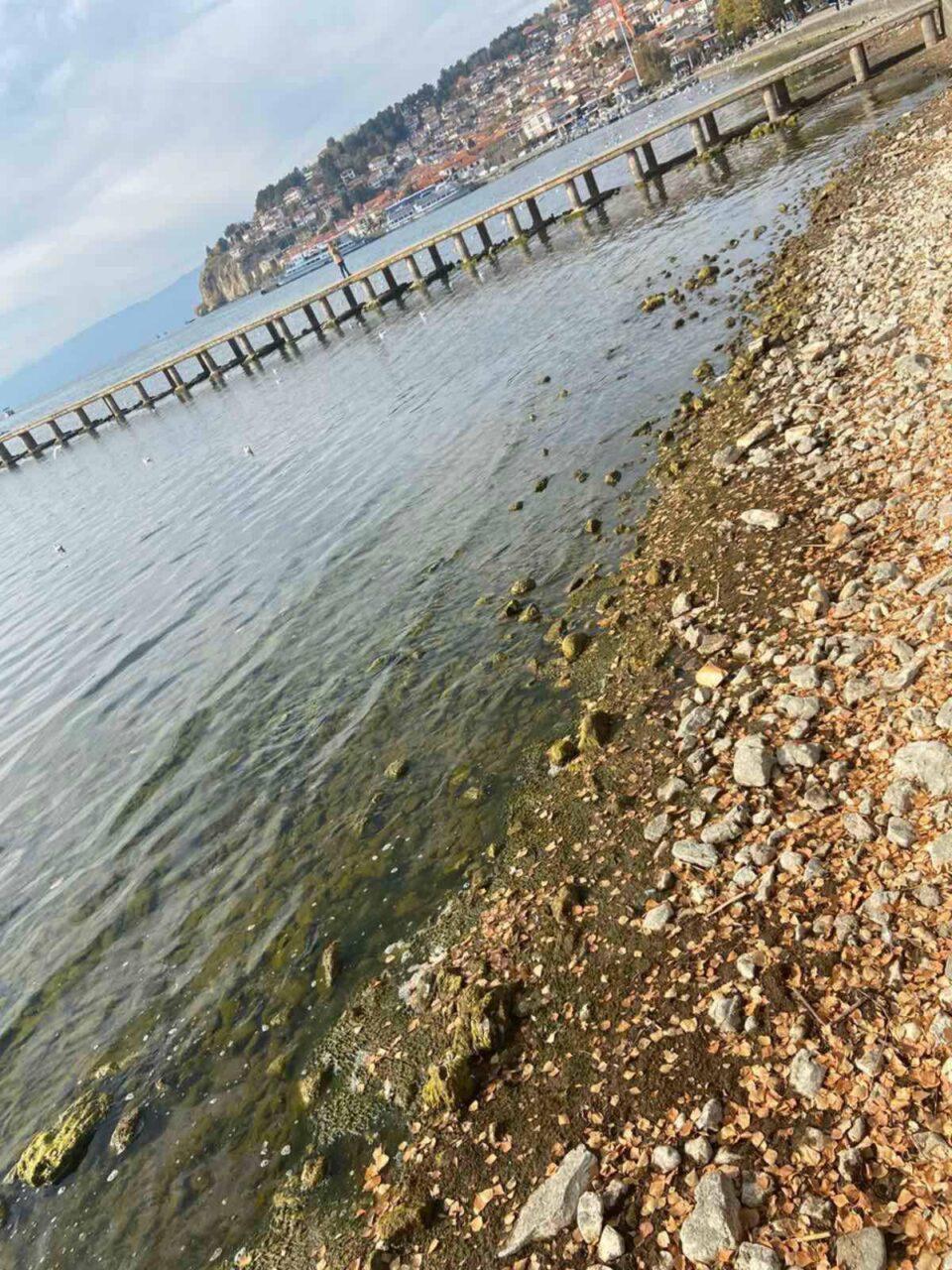 ФОТО: Состојбата на Охридското езеро станува загрижувачка