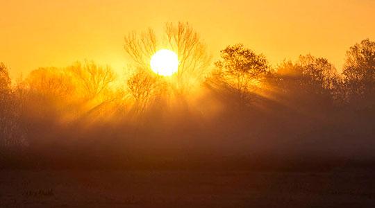Сончево со утринска магла