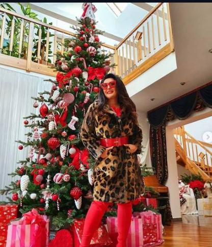 ФОТО: Го накити дворот со новогодишна декорација како на филмовите – Драгана Мирковиќ не издржа, а да не се пофали !