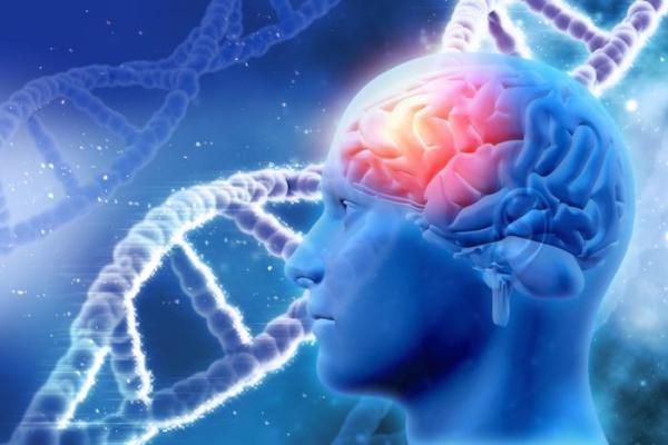 Дали може да се запре Алцхајмеровата болест: Еве што велат најновите истражувања