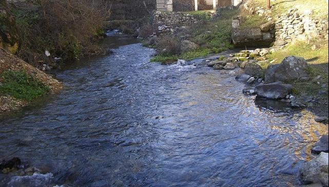 Маж ја повредил сопругата, па го пронајдоа удавен во Црна Река