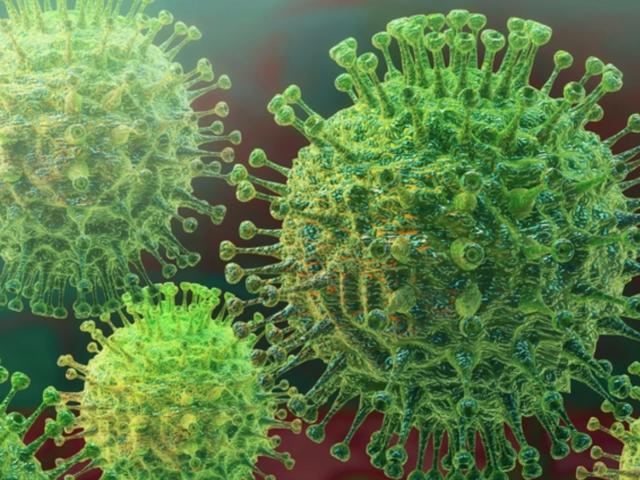 336 новозаразени и 10 починати од коронавирус во земјава