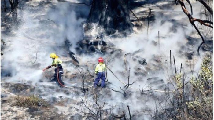 Во Австралија пожар на островот Фрејзер, локалните жители евакуирани