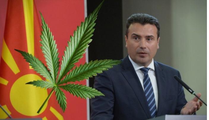 ВМРО-ДПМНЕ: Пратениците на СДСМ ги интересира само да им помине законот за марихуана на Заев за да му врви бизнисот на неговиот брат Вице