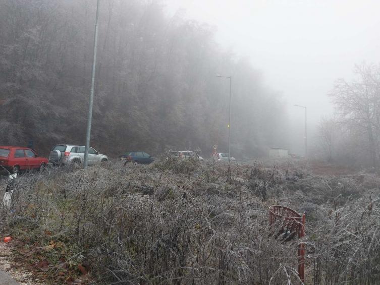 Сообраќајот кон Маврово во прекин поради паднати дрвја на патот