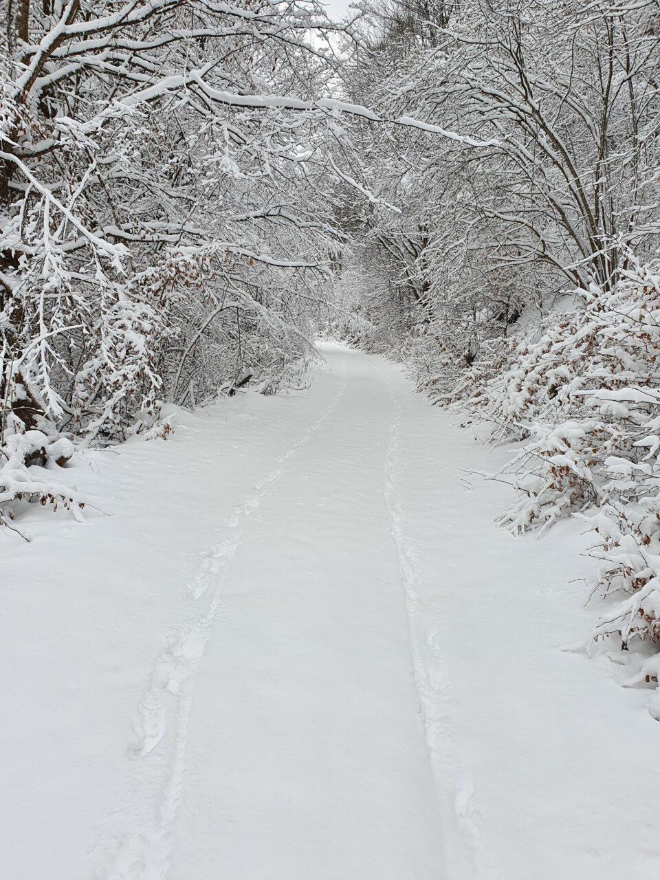 СИТЕ ПАТИШТА ВОДАТ КОН МИХАЈЛОВО – формирана нова снежна покрива од 30 сантиметри на Кожуф(ФОТО)