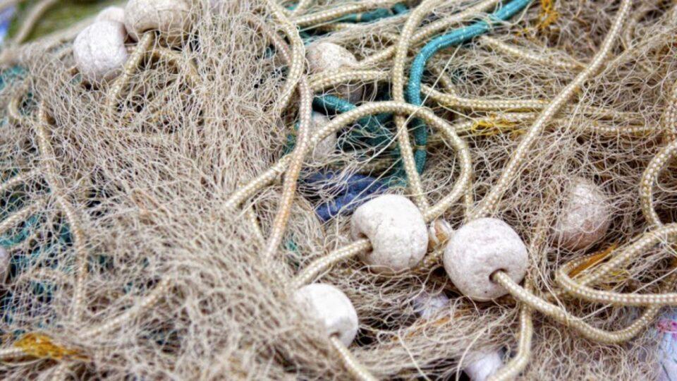 Во Преспанско Езеро пронајдени 25 рибарски мрежи со улов на крап со тежина од околу 23 килограми