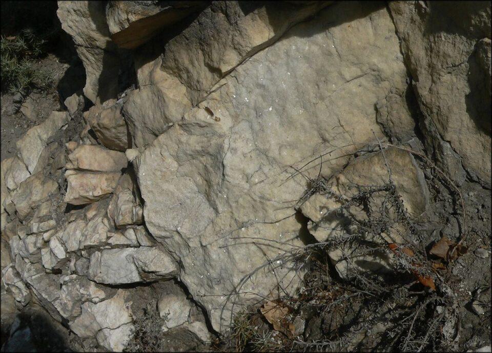 Трагедија: Маж паднал од карпа и починал на лице место