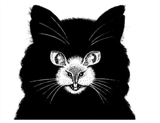 Тоа што прво ќе го видите на оваа фотографија многу зборува за вас: Мачка или глувче?