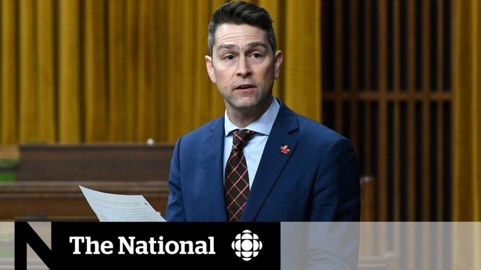 ФОТО: Канадски пратеник се појави гол на онлајн седница на Парламентот!