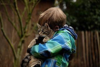 НАЈНОВО ИСТРАЖУВАЊЕ: Мачките ја намалуваат анксиозноста кај децата со аутизам