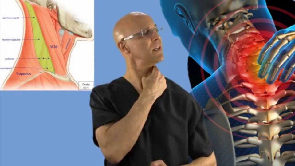 ВИДЕО: Еве како за 90 секунди да го опуштите закочениот врат